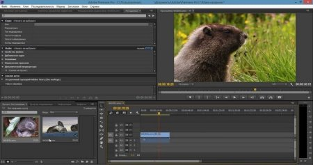 Скачать Adobe Premiere Pro русская версия для Windows
