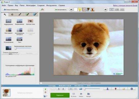 Скачать Picasa 3.9 на русском языке