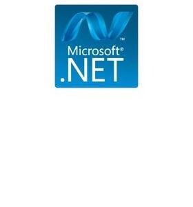 Net Framework 4.0.30319